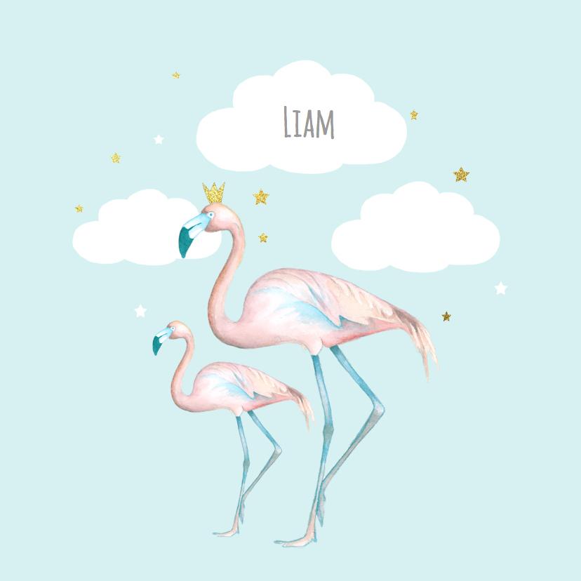 Geboortekaartjes - Geboorte flamingo jongen