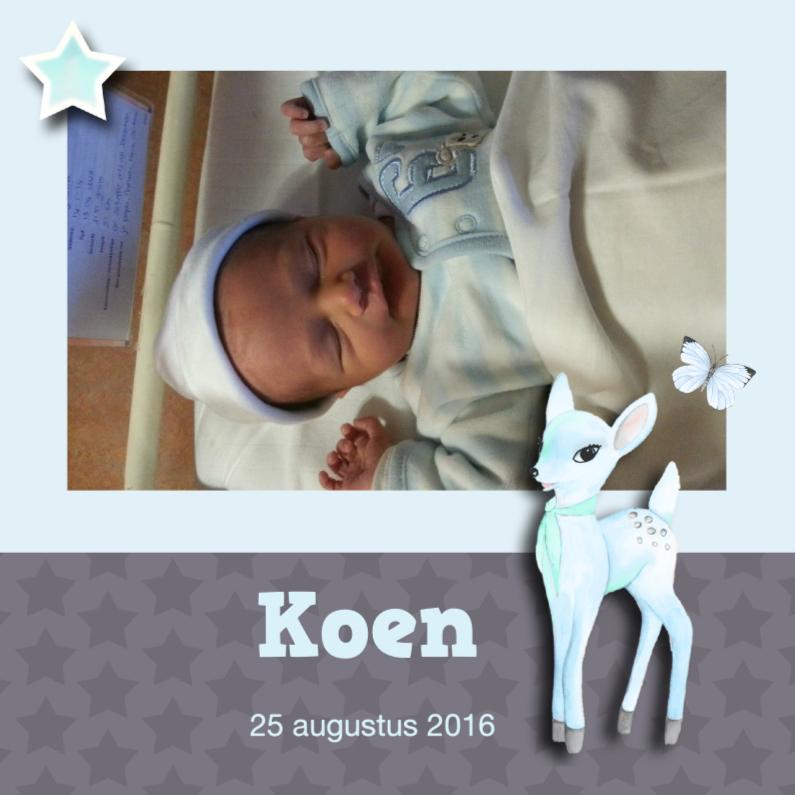 Geboortekaartjes - Geboorte jongen hertje en foto