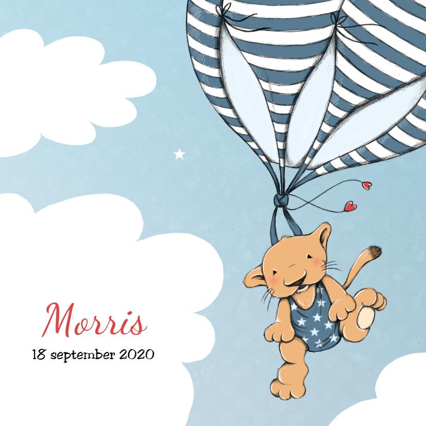 Geboortekaartjes - Geboorte leeuw luchtballon - IH