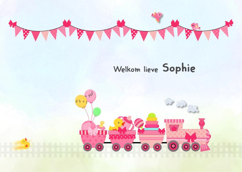 Geboortekaartjes - Geboorte meisje met trein