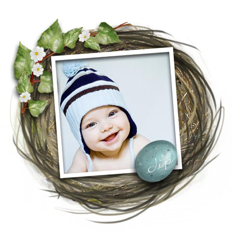 Geboortekaartjes - Geboorte-nestje jongetje