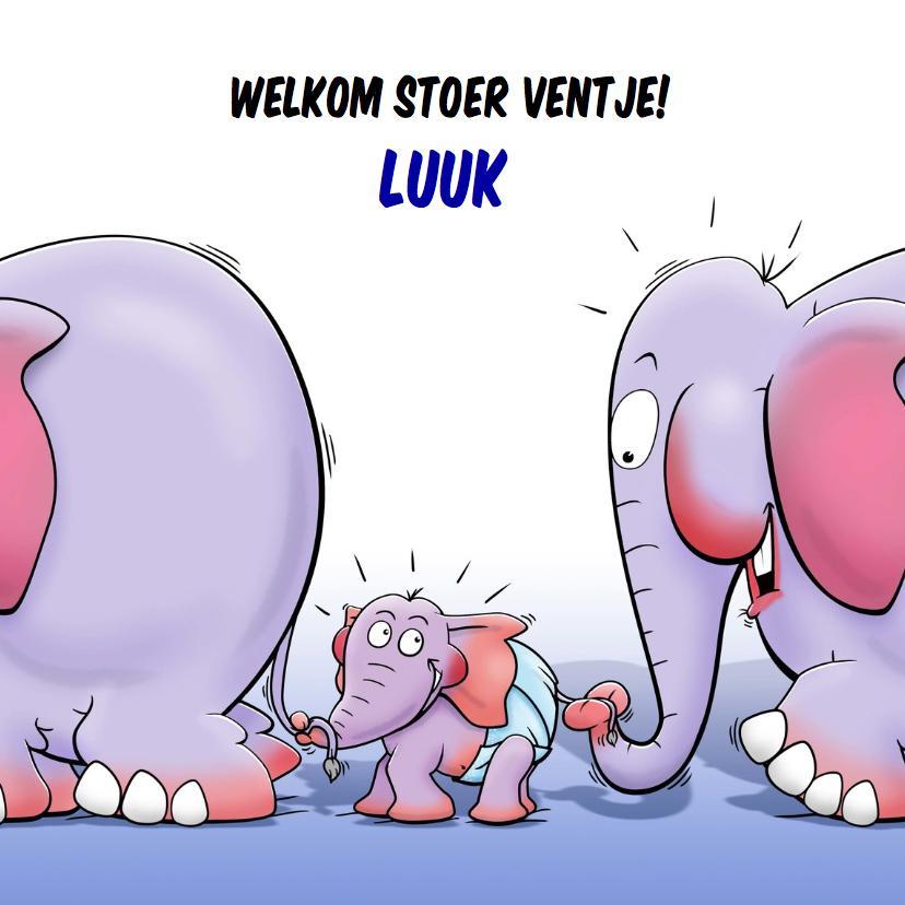 Geboortekaartjes - Geboorte olifantje jongen - HE