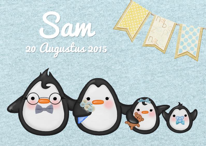Geboortekaartjes - Geboorte Pinguin Broertje - TbJ