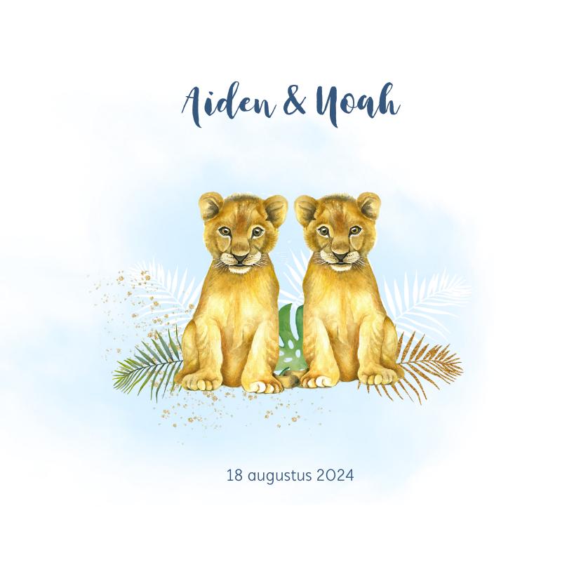 Geboortekaartjes - Geboorte tweeling jongetjes leeuwtjes