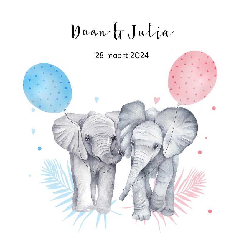 Geboortekaartjes - Geboorte tweeling meisje jongen olifantjes