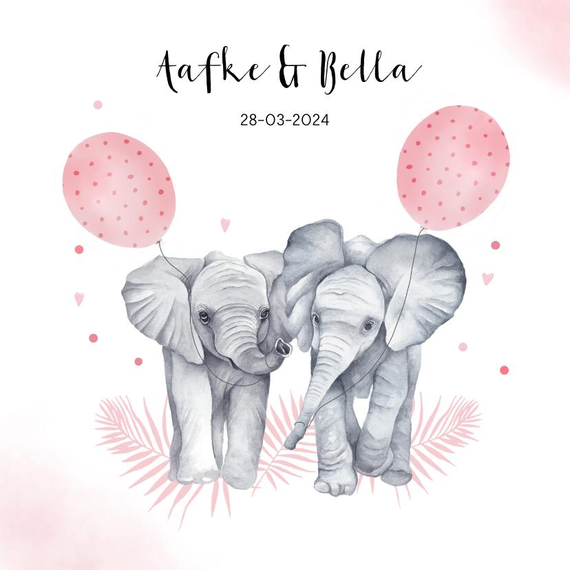Geboortekaartjes - Geboorte tweeling meisjes olifantjes
