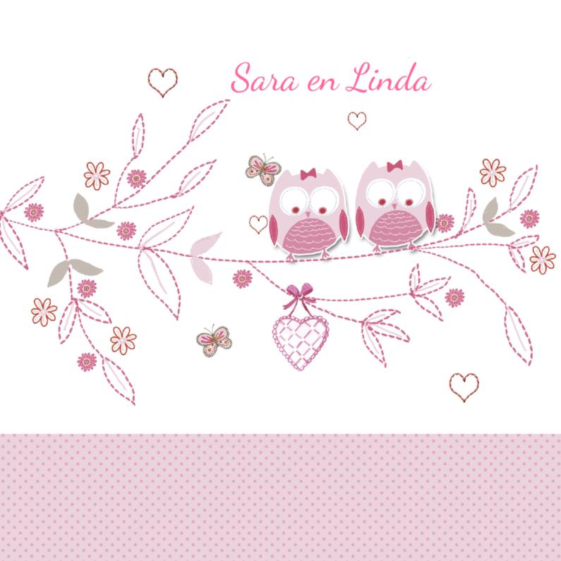 Geboortekaartjes - geboorte tweeling uiltjes tak roze