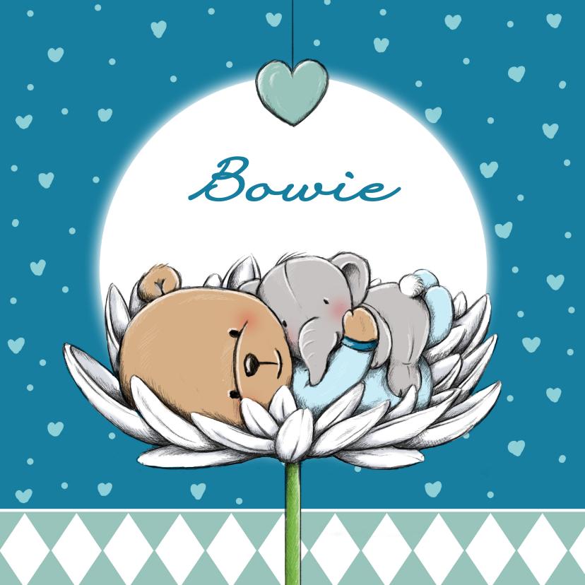 Geboortekaartjes - Geboortekaart beertje Bowie IH