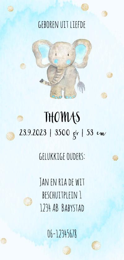 Geboortekaartjes - Geboortekaart-enkel olifantje blauw