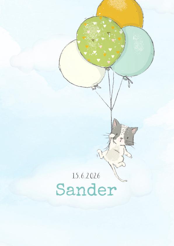 Geboortekaartjes - Geboortekaart jongen, kitten en ballonnen