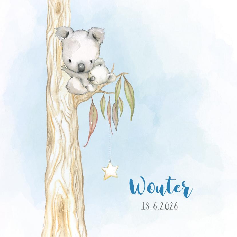 Geboortekaartjes - Geboortekaart koala-beer jongen