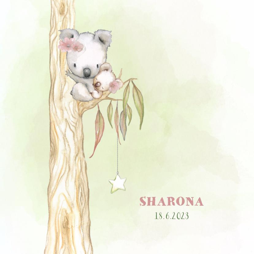 Geboortekaartjes - Geboortekaart koala-beer meisje