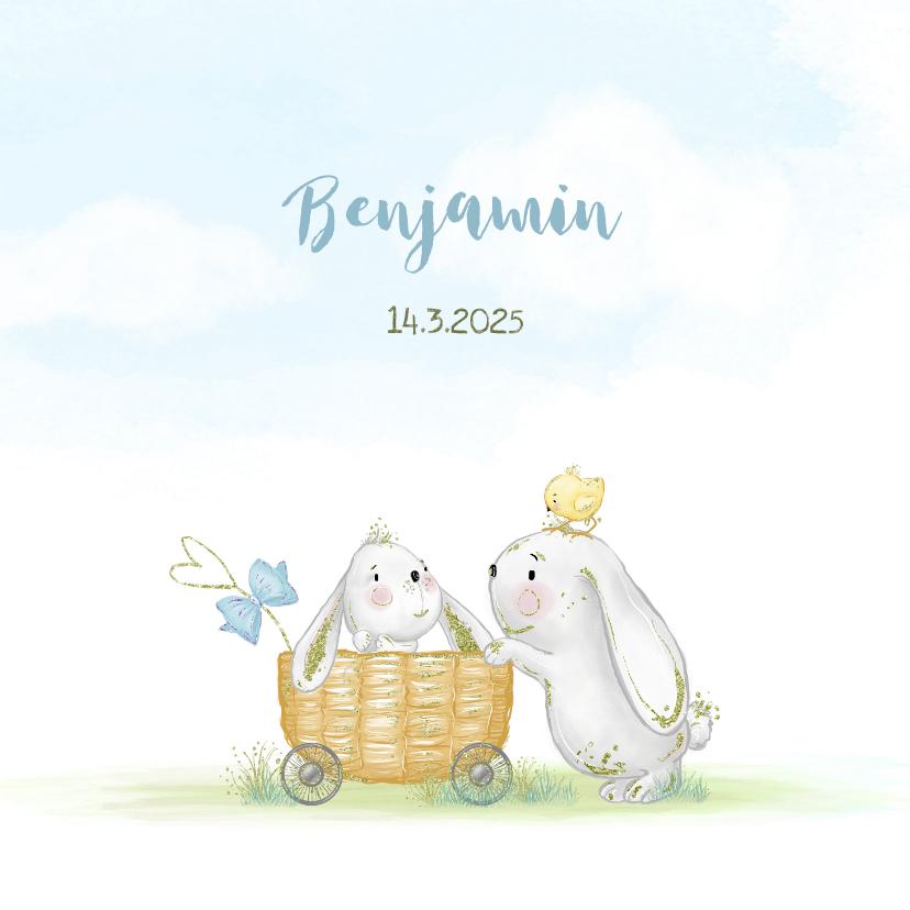 Geboortekaartjes - Geboortekaart konijn jongen met kuikens en vlinder
