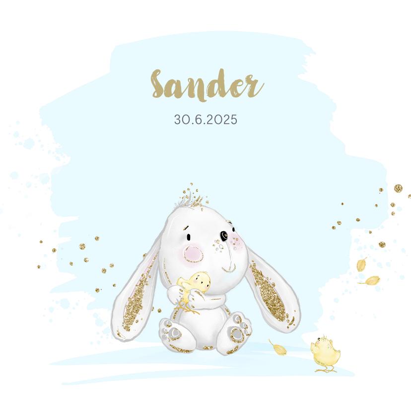 Geboortekaartjes - Geboortekaart konijntje - jongen