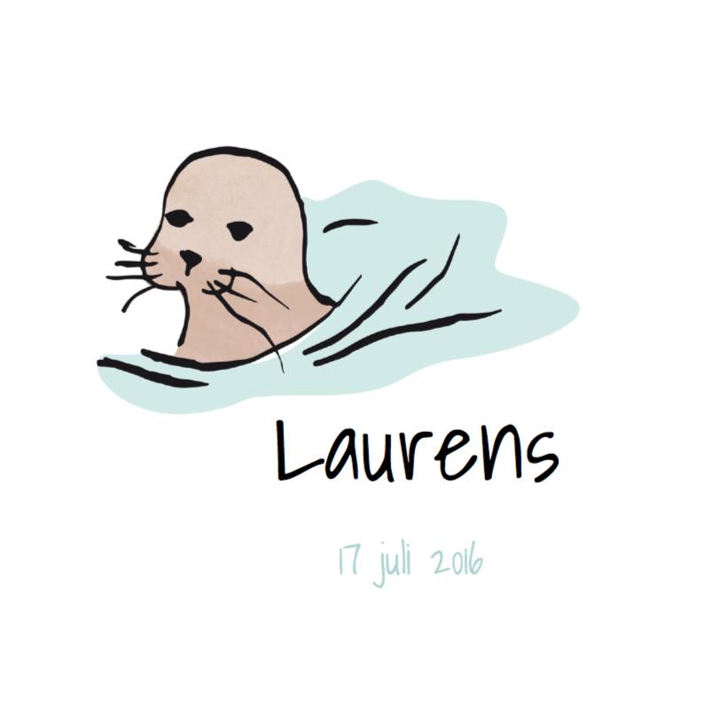 Geboortekaartjes - Geboortekaart lief zeehondje