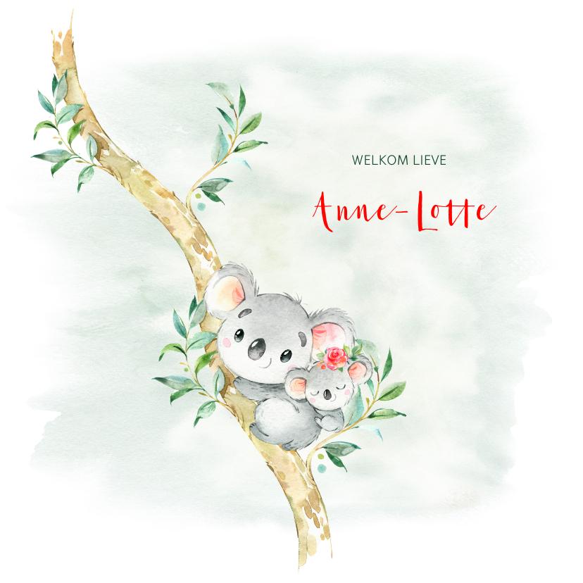 Geboortekaartjes - Geboortekaart meisje koala met bloem