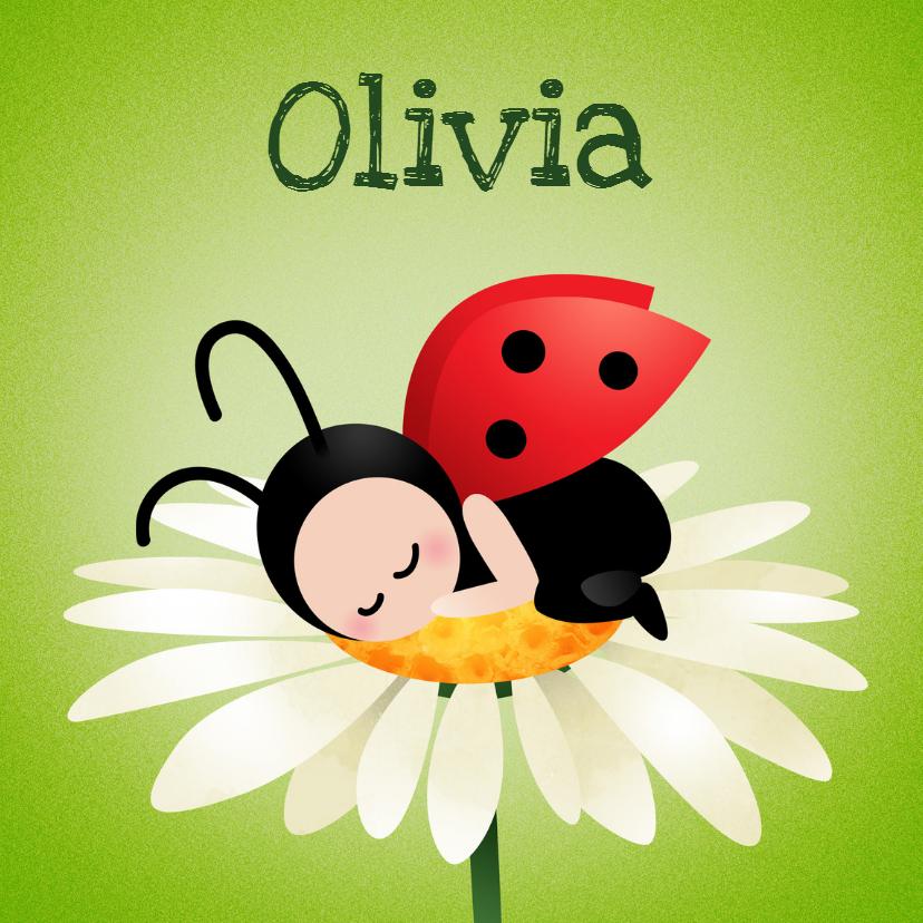 Geboortekaartjes - Geboortekaart meisje lieveheersbeestje