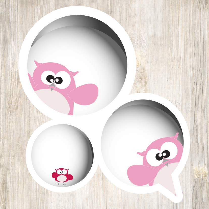 Geboortekaartjes - geboortekaart meisje twee mama-s