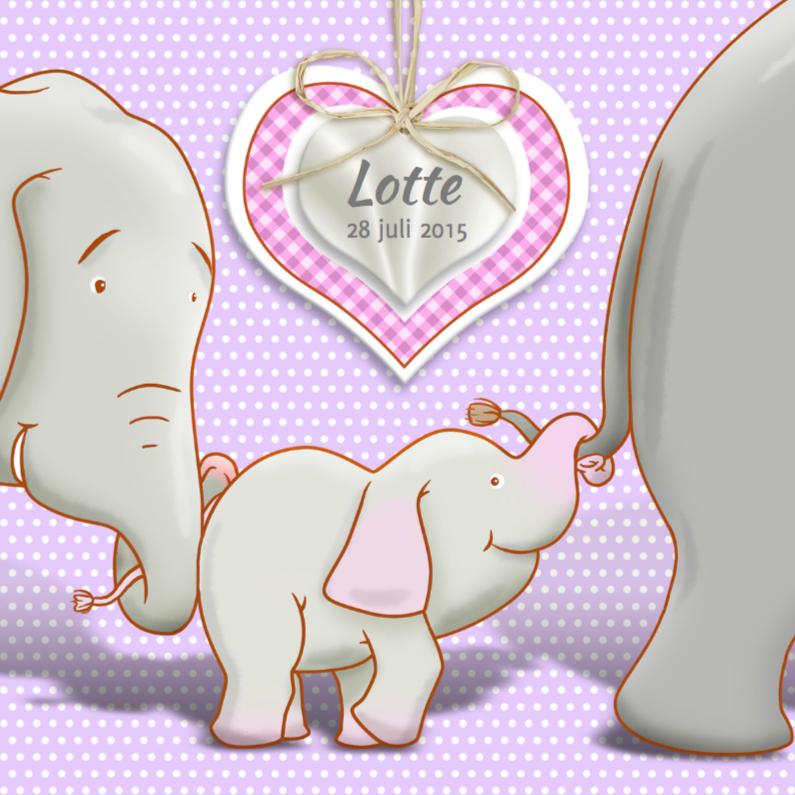 Geboortekaartjes - Geboortekaart met olifantjes voor een meisje