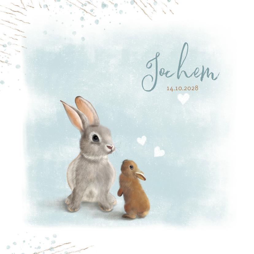 Geboortekaartjes - Geboortekaart moeder- en babykonijn
