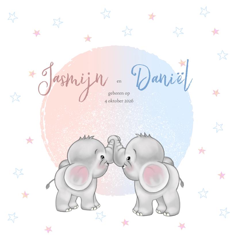 Geboortekaartjes - Geboortekaart olifantjes jongen en meisje tweeling