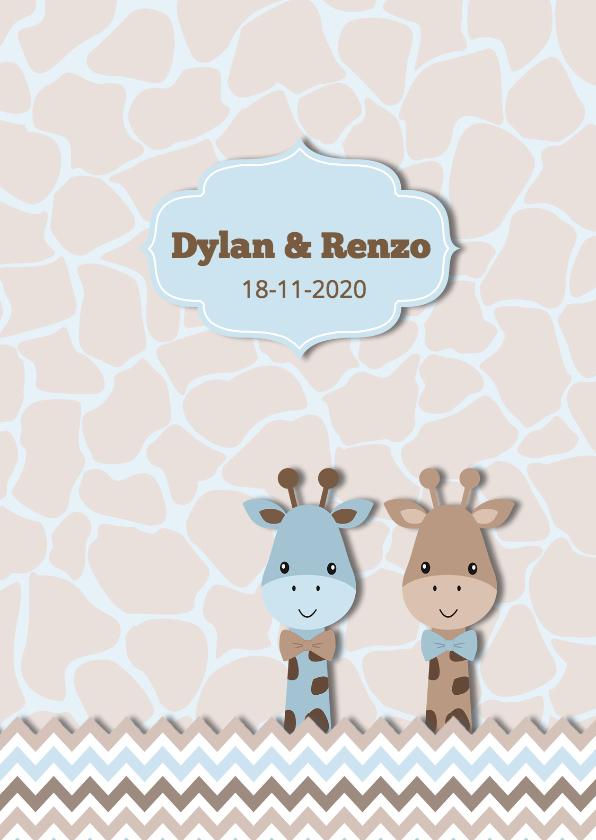 Geboortekaartjes - Geboortekaart tweeling staand