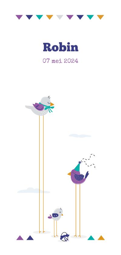 Geboortekaartjes - Geboortekaart vogels met een jong vogeltje en een kuikentje
