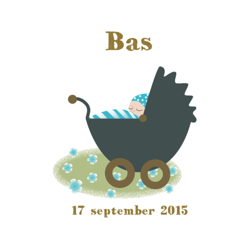 Geboortekaartjes - Geboortekaartje Bas