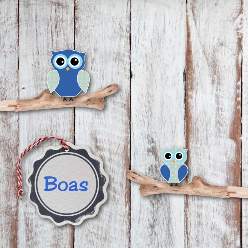 Geboortekaartjes - Geboortekaartje Boas