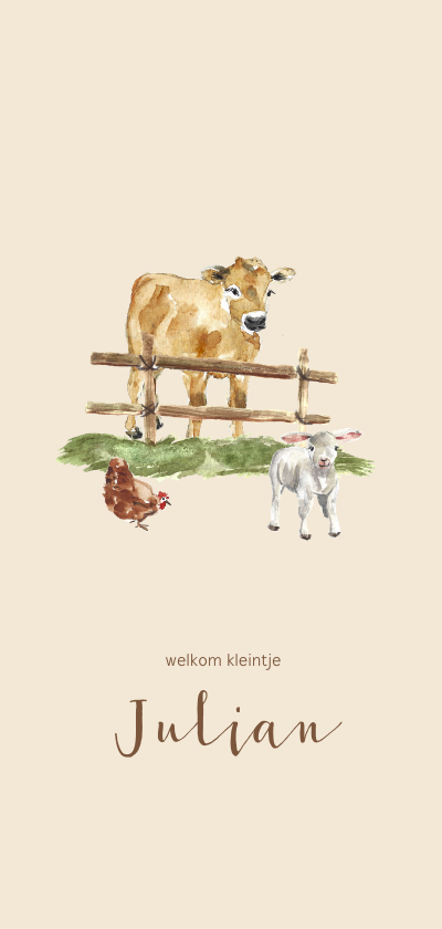 Geboortekaartjes - Geboortekaartje boerderij koe en lammetje