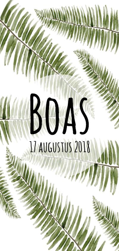 Geboortekaartjes - Geboortekaartje botanisch en uniek