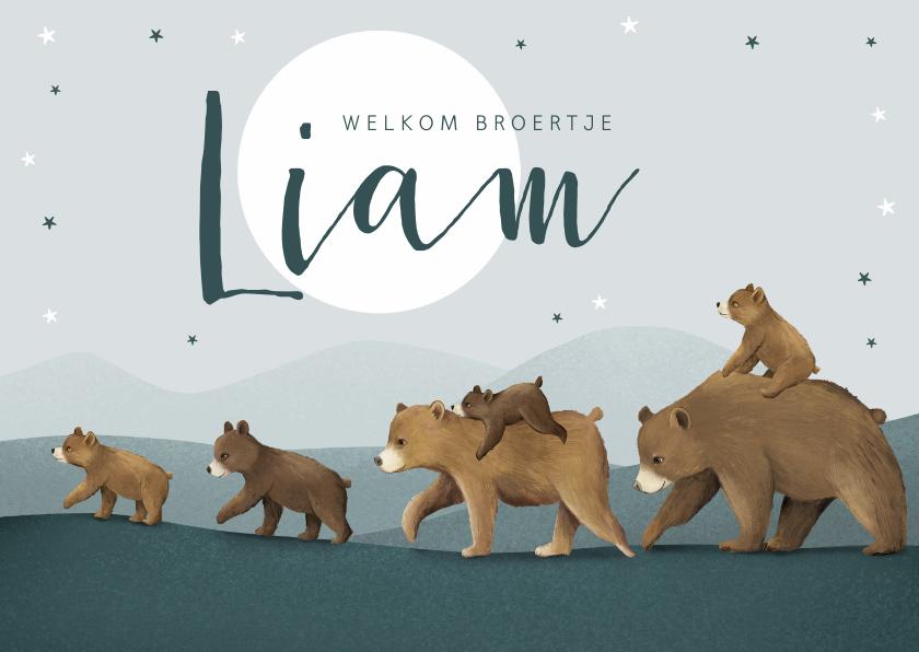 Geboortekaartjes - Geboortekaartje broertje dieren beren familie sterren maan