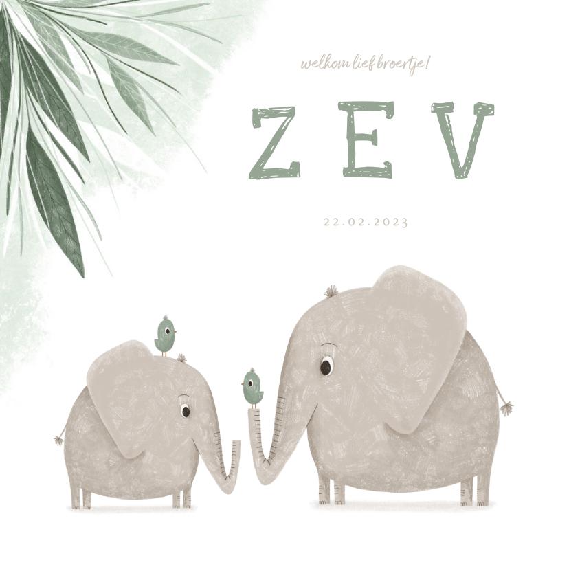 Geboortekaartjes - Geboortekaartje broertje met olifantjes en vogels