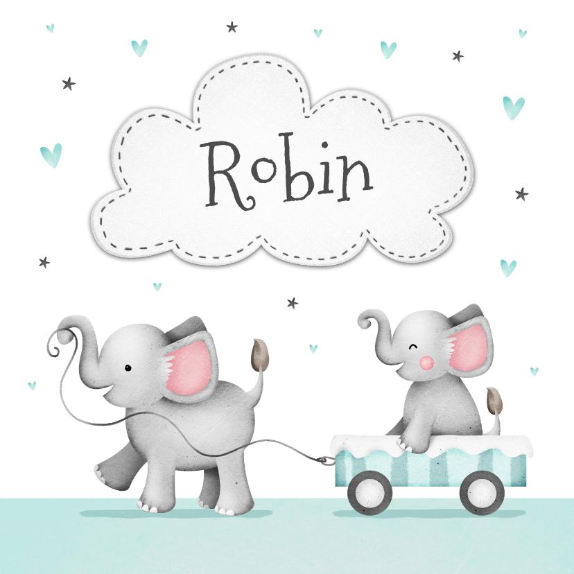 Geboortekaartjes - Geboortekaartje broertje zusje olifantjes wolkje