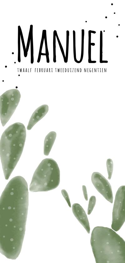 Geboortekaartjes - Geboortekaartje Cactus