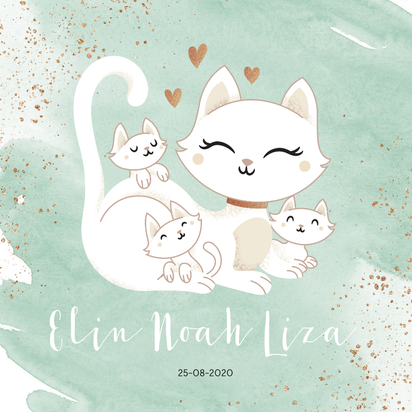 Geboortekaartjes - Geboortekaartje drieling meerling neutraal poes met kittens