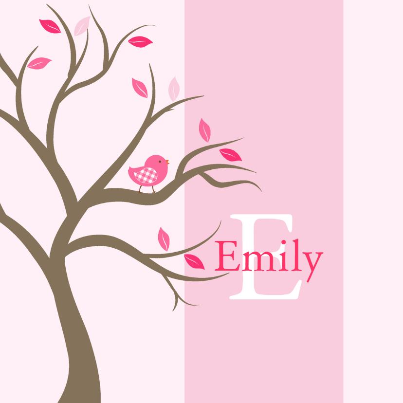 Geboortekaartjes - Geboortekaartje Emily foto
