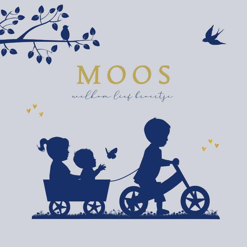 Geboortekaartjes - Geboortekaartje fietsje met kar en broertje zusje en baby