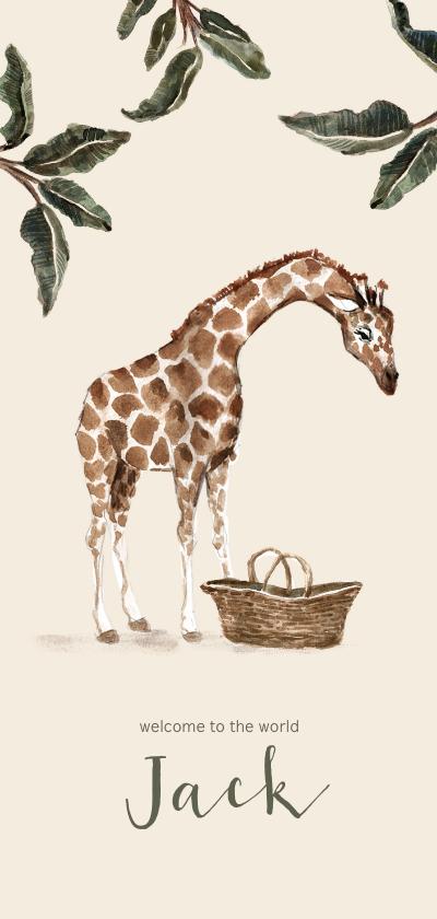 Geboortekaartjes - Geboortekaartje giraf bij een babymandje en groene bladeren