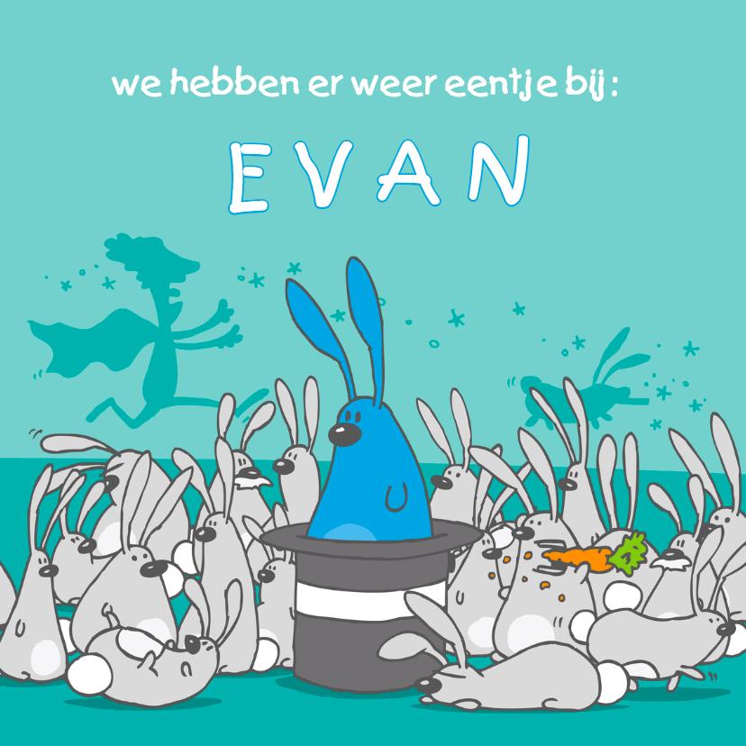 Geboortekaartjes - Geboortekaartje grappig met konijntjes blauw