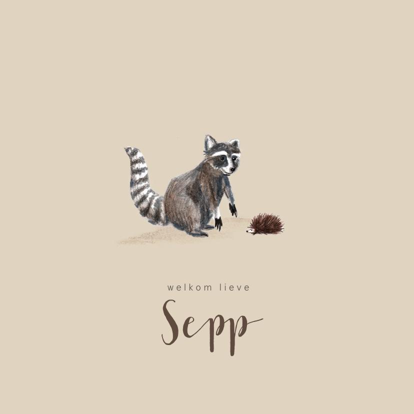 Geboortekaartjes - Geboortekaartje herfst wasbeer jongen