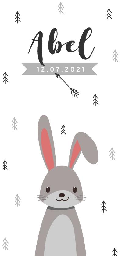Geboortekaartjes - Geboortekaartje hip en trendy met konijn