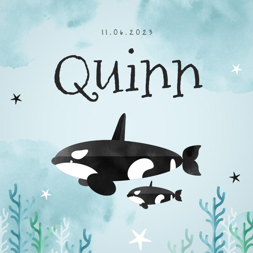 Geboortekaartjes - Geboortekaartje hip lief dieren orka zee oceaan