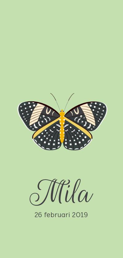 Geboortekaartjes - Geboortekaartje in mintgroen met een mooie vlinder