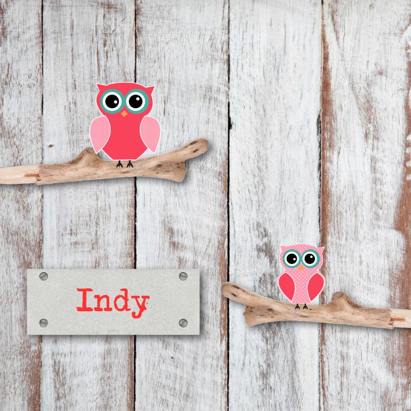 Geboortekaartjes - Geboortekaartje Indy