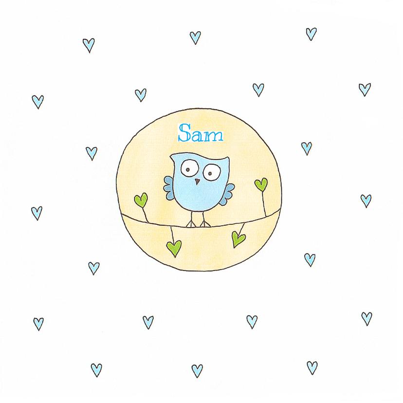 Geboortekaartjes - Geboortekaartje jongen uil cirke