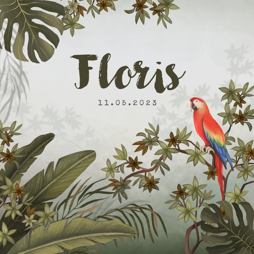 Geboortekaartjes - Geboortekaartje jungle dieren papegaai