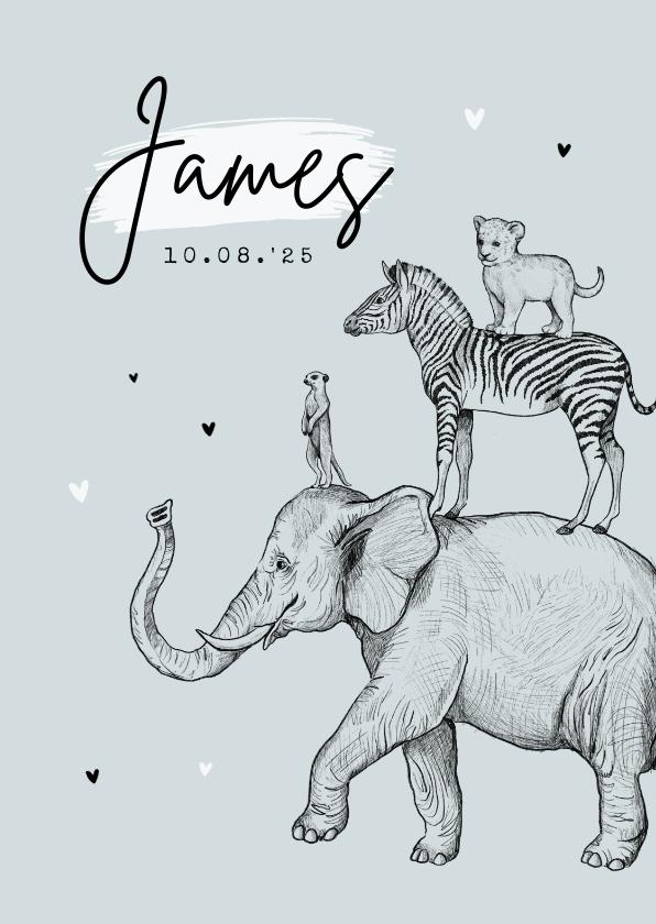 Geboortekaartjes - Geboortekaartje jungle dieren stokstaart olifant leeuw zebra