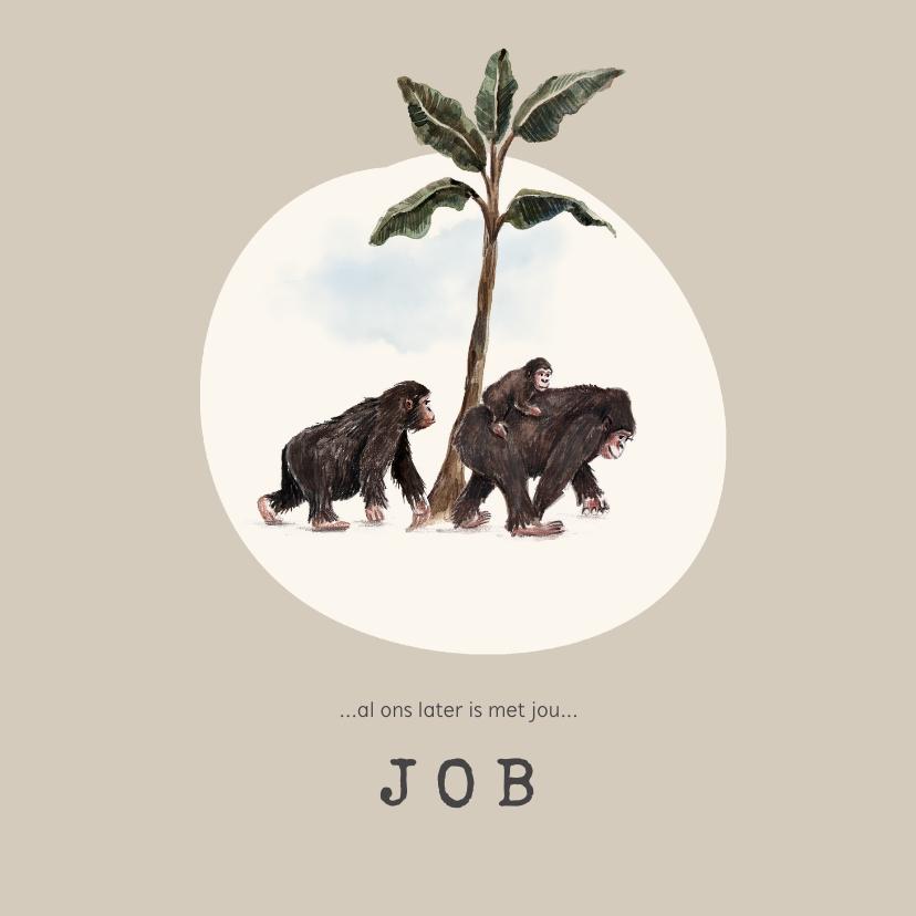 Geboortekaartjes - Geboortekaartje jungle met apen en klein aapje