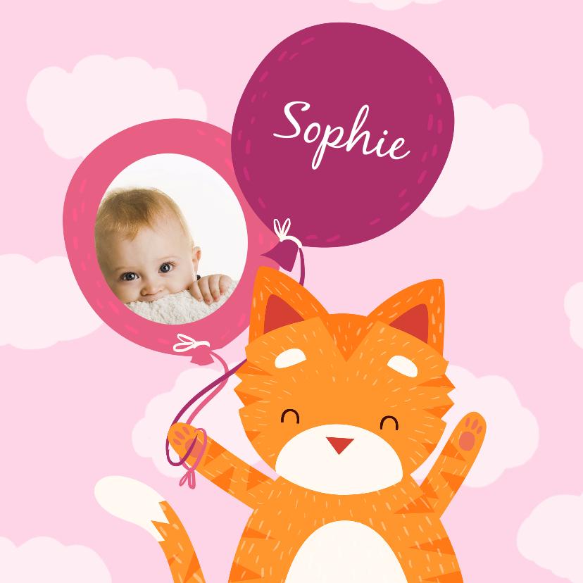 Geboortekaartjes - Geboortekaartje Knuffelkat meisje
